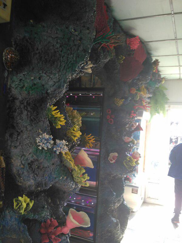 Уважаемые Гости рынка для вас с 9.00 до 18.00  в павильоне 134 открылась обновлённая аквагаллерея